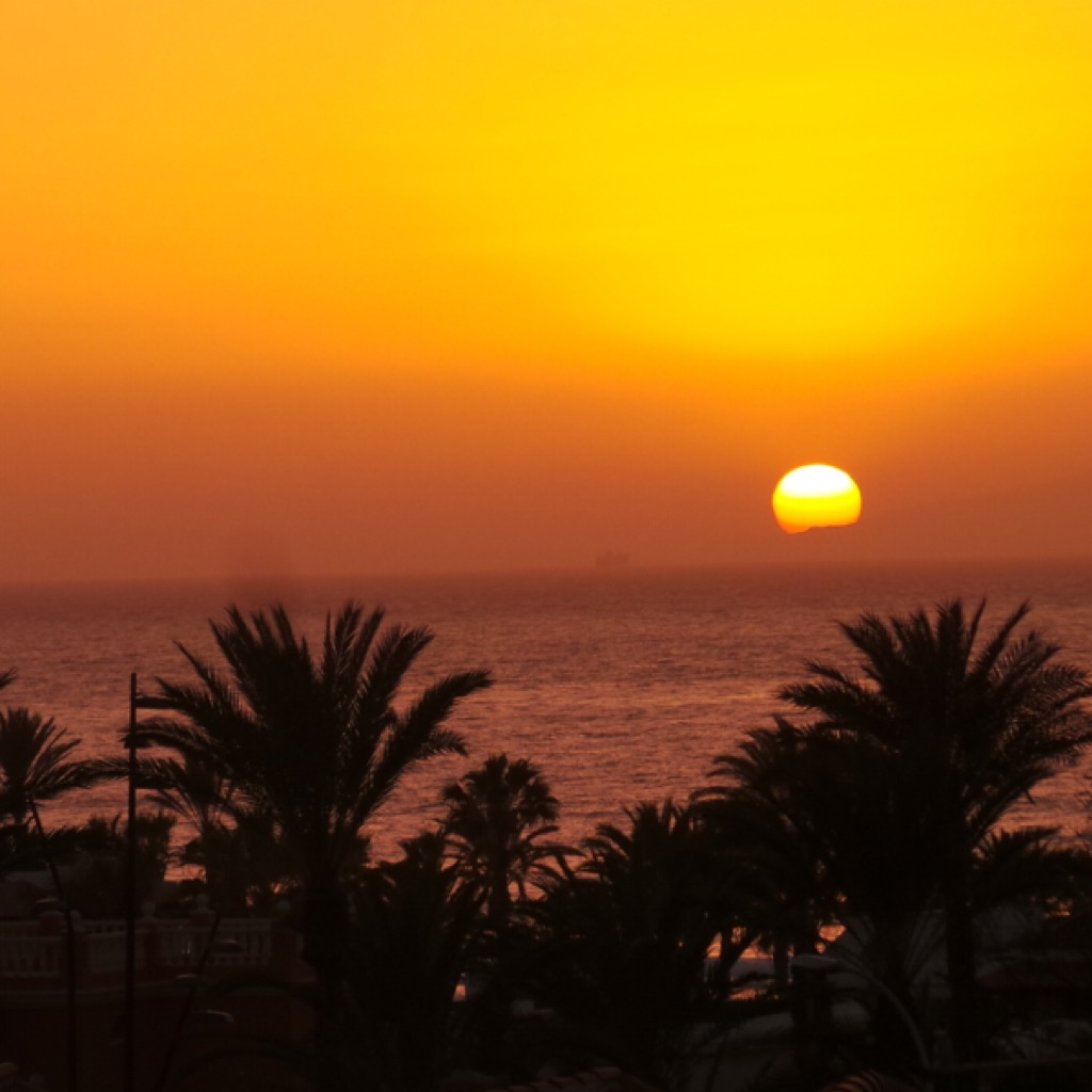 Ten Days in Tenerife Photo Diary Playa de las Americas