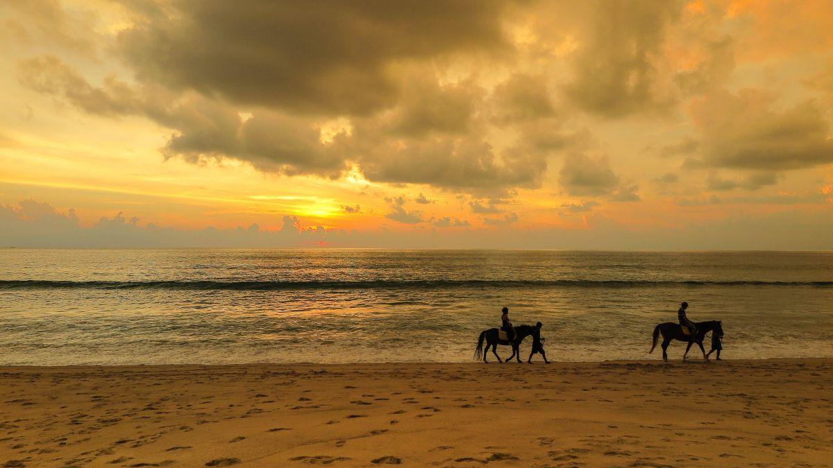 Angsana Laguna Phuket Beach horse riding