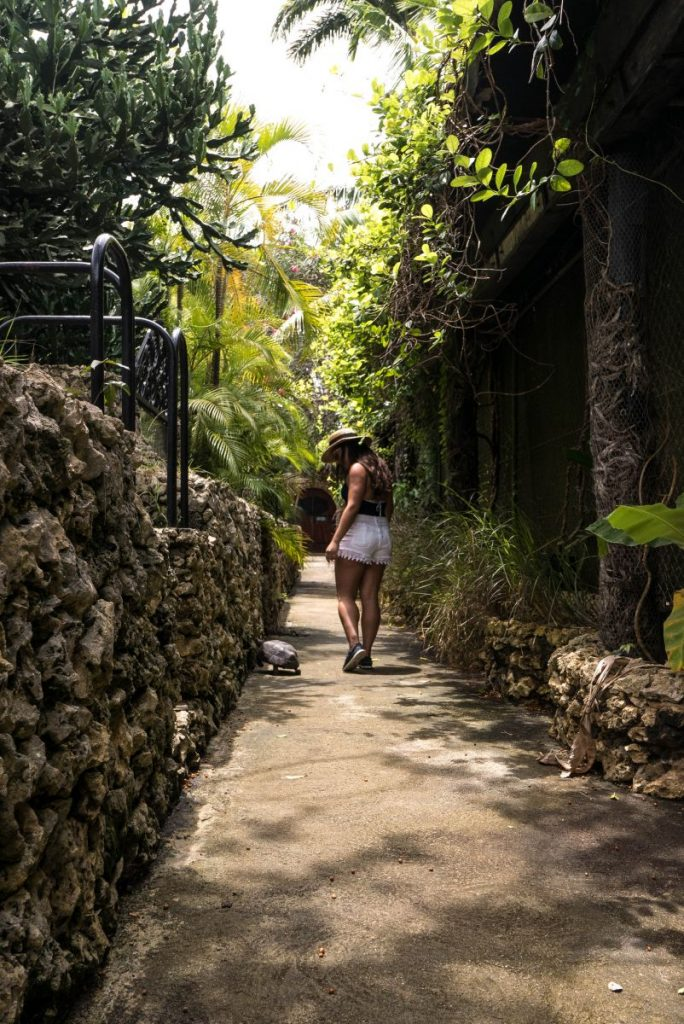 Nadia El Ferdaoussi Irish Examiner Travel Barbados