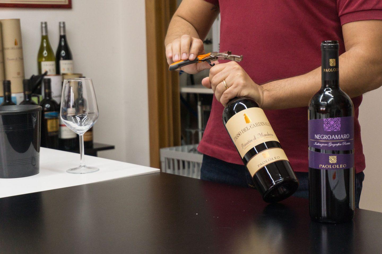 Nadia El Ferdaoussi, the daily s'elf, Brindisi, Puglia. Travel in Italy vineyard wine tasting Paolo Leo primitivo negroamaro San Donaci