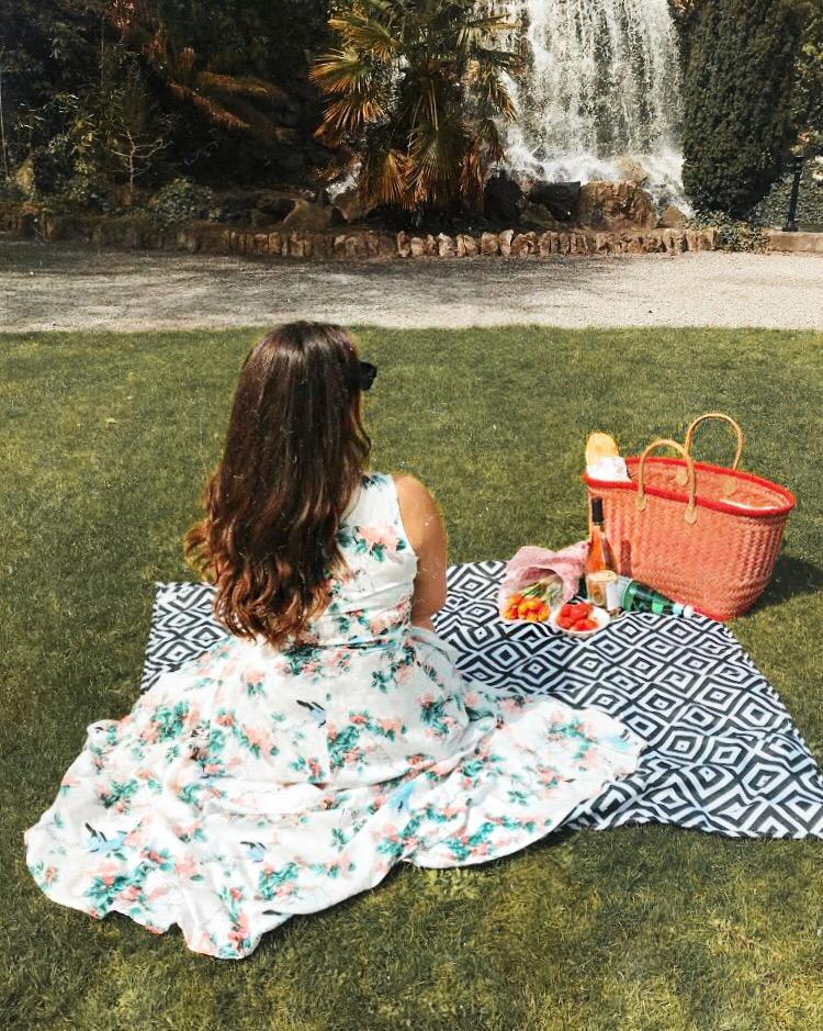 Nadia El Ferdaoussi TK Maxx picnic Iveagh Gardens waterfall Dublin