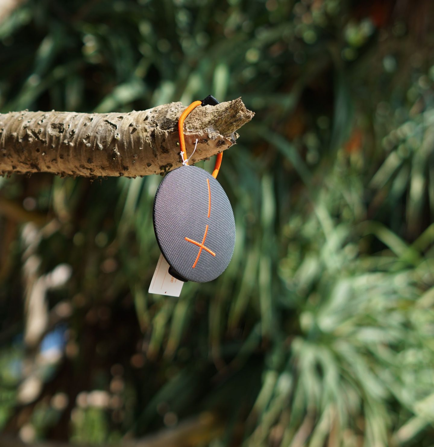 UE Roll hanging from tree on beach in Southern Sri Lanka