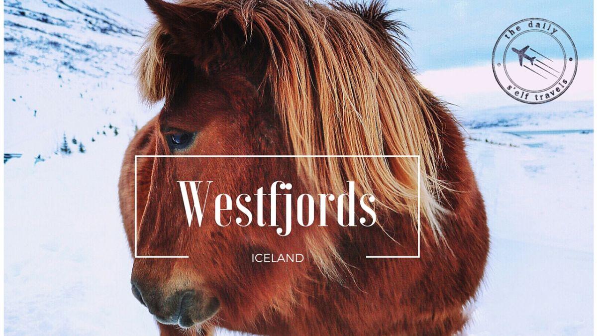 Westfjords vlog Icelandic horses in Heydalur thedailyself.me Nadia El Ferdaoussi travel blogger Iceland