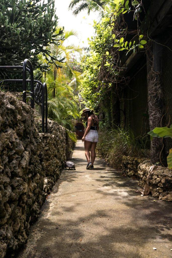 Nadia El Ferdaoussi Irish Examiner Travel Barbados