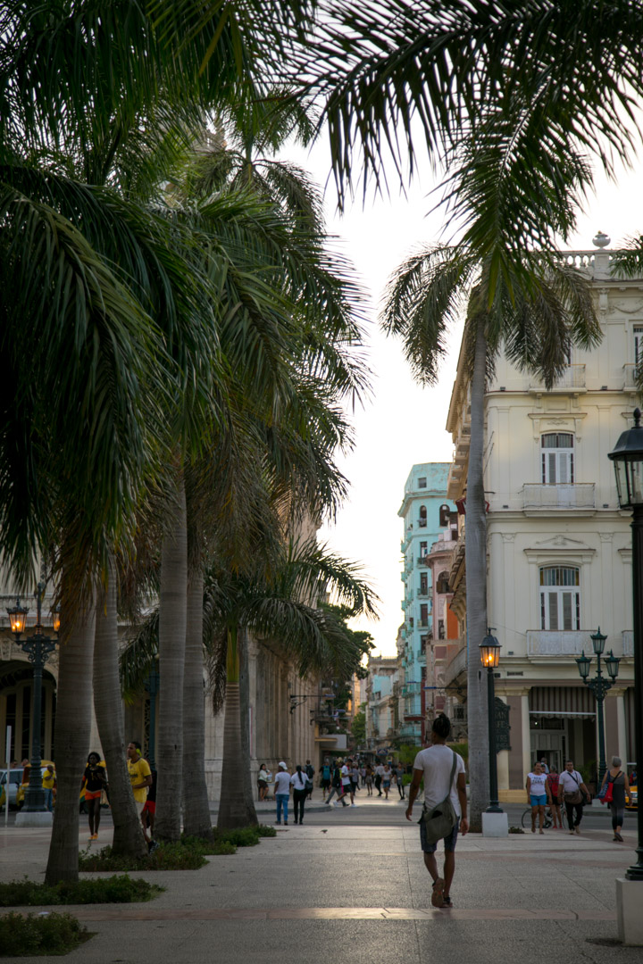 Havana Guide - Things to do in Havana, where to stay, eat, drink and