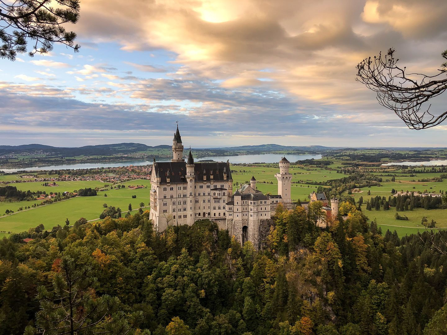 neuschwanstein castle bavarian road trip highlight